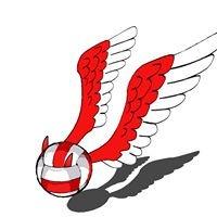 Volley Ball Villars (VBV officiel)