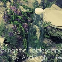 Signature Designs By Andreigh