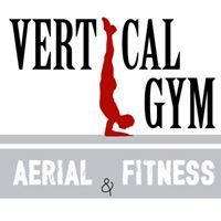 Vertical Gym - Aerial & Fitness