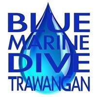 Blue Marine Dive Trawangan