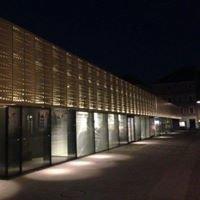 Kug/Theater Im Palais
