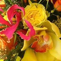 Petals 'N Blooms