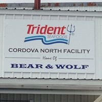 Trident Seafoods North Plant