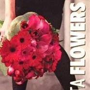 Bonavista Flowers