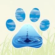 Heavenly Paws Pet Cremation of Tampa