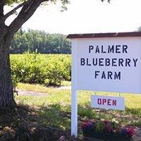 Palmer Blueberry Farm