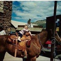 Kellem's Saddle Shop