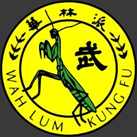 Wah Lum Kungfu and Tai Chi of Dallas
