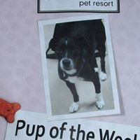 Woof Pet Resort
