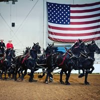 Whispery Pines Percherons Carriage Rides & Logging