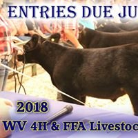 WV State 4-H and FFA Livestock Roundup
