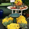 Chaves' Gardens & Florist