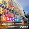 3Kings CarpetsPlus ColorTile