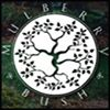 Mulberry Bush Landscape Design