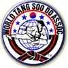 North Alabama YMCA Tang Soo Do