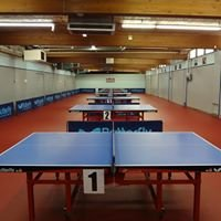 Table Tennis Club of Indianapolis