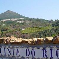 Quinta do Rio - Natuurcamping - Noord Portugal