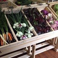 One Life Farm- Organic Farm
