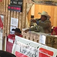 Foothills Auctioneers Inc.