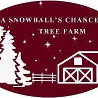 A Snowball's Chance Tree Farm, LLC