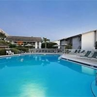 Join Us on Siesta Key, Florida