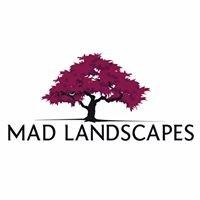 Mad Landscapes