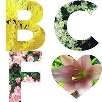Boston City Florist
