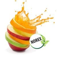 Norex Flavours Private Limited