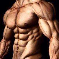 Muscle Hut Gym NSW {MOGA}