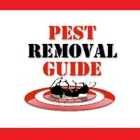 Pest Removal Guide