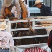 Wilson County Kansas Fair Association