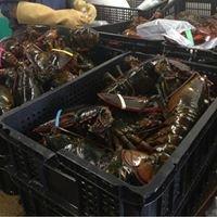 K&C Seafood