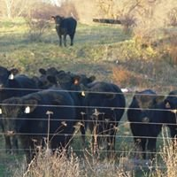 Stoner Family Farms, LLC