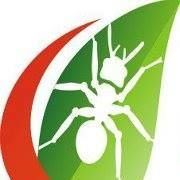 Central Termite and Pest Control, Hot Springs, Arkansas