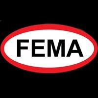 FEMA Corporation