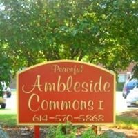 Ambleside Commons