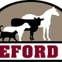 Hereford Vet - Equine