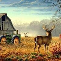 Exploitation agricole biologique A La Majonnerie