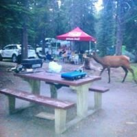 Whistler's Campground