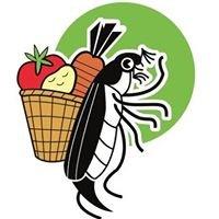 La Ferme du Hanneton - Agriculture Biologique