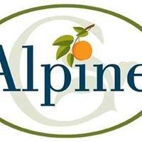 Alpine Guest Care