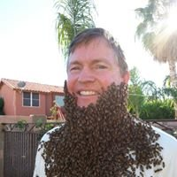 The Beehive LLC Bee and Wasp Removal