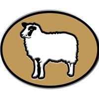 Whispering Pines Registered Shetland Sheep
