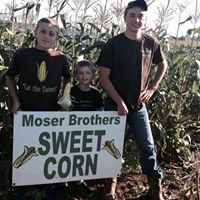 Moser Brothers' Sweet Corn