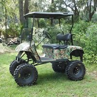 Easy Go-ing Golf Carts by Andy