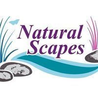 Natural Scapes Landscaping and Design