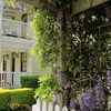 Middleton House, Maleny - Accommodation