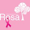 Empreendedorismo Rosa thumb