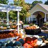 Good Earth Garden Market
