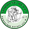 Nording Bulls - Powerchair Hockey
